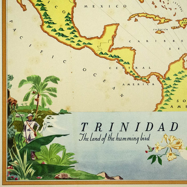 Trinidad: The Land of the Hummingbird, detail