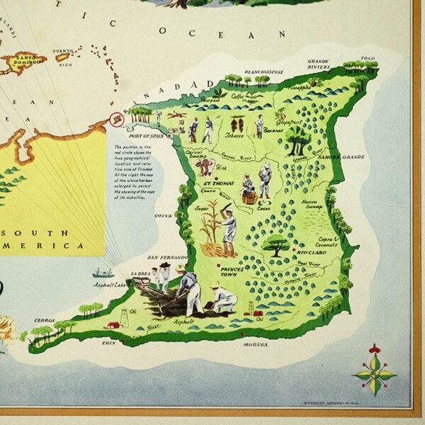 Trinidad: The Land of the Hummingbird, detail