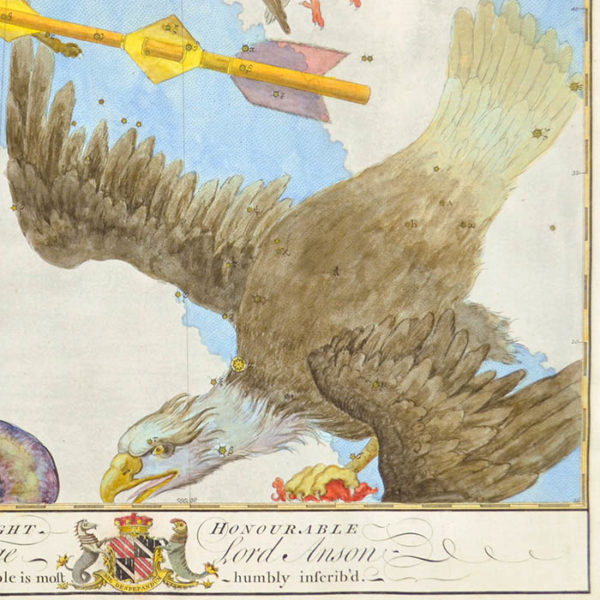 John Bevis, [Aquila, Delphinus, Sagitta, and Vulpecula], detail