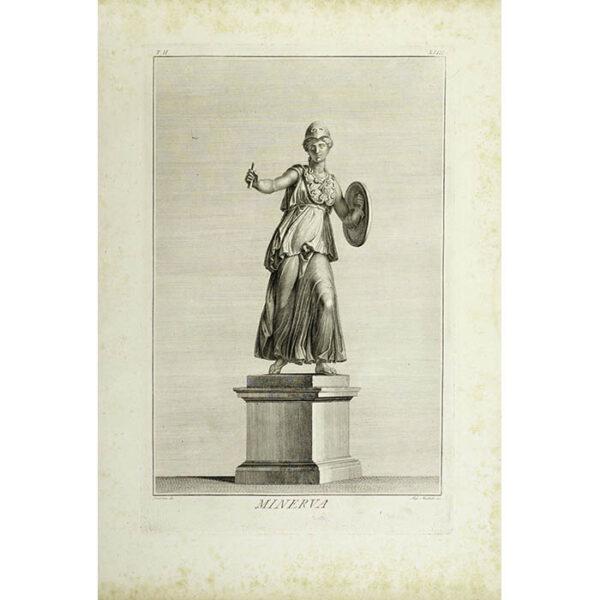 Minerva, Plate 23 (Dolcibene/Muchetti)