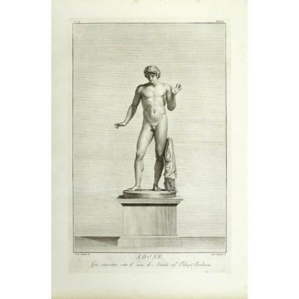 Adone, Giá conosciuto sotto il nome di Narciso nel Palazzo Barberini, Plate 31 [Adonis, Already known by the name as Narcissus in the Barberini Palace] (Matteini/Muchetti)