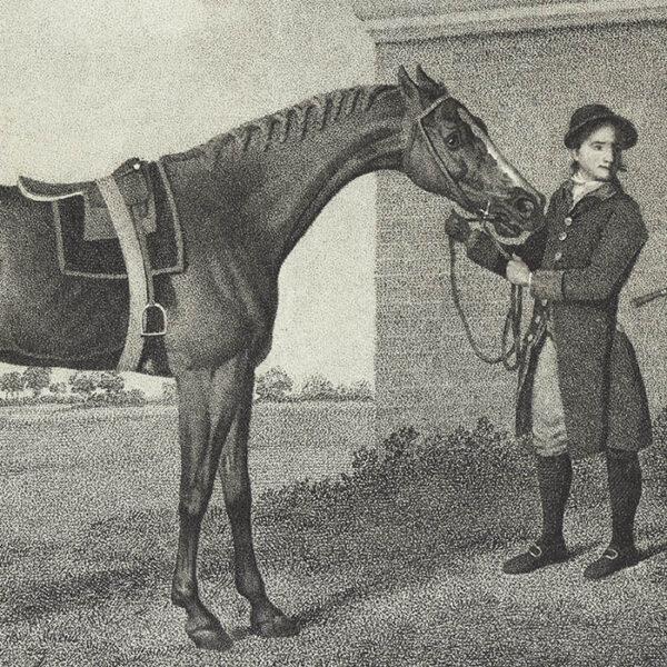 George Stubbs, Eclipse, detail