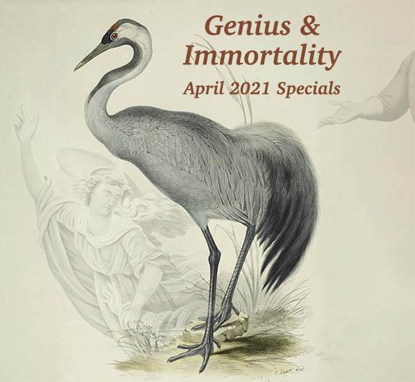 Genius & Immortality: April 2021 Specials