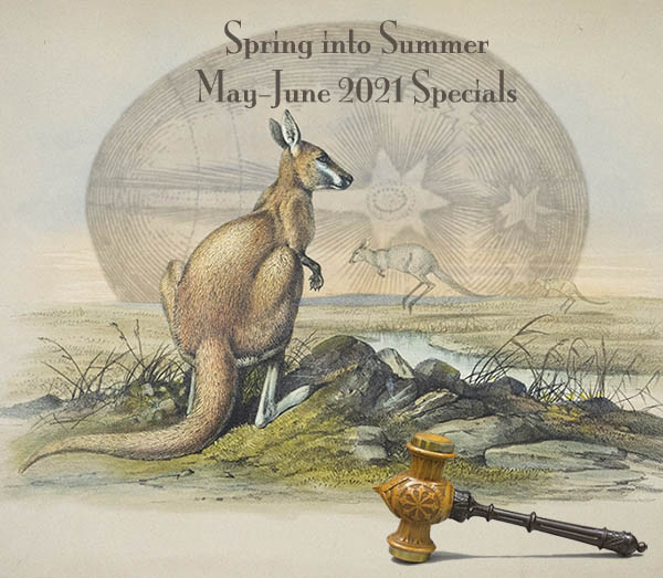 Spring Into Summer: May 2021 Specials