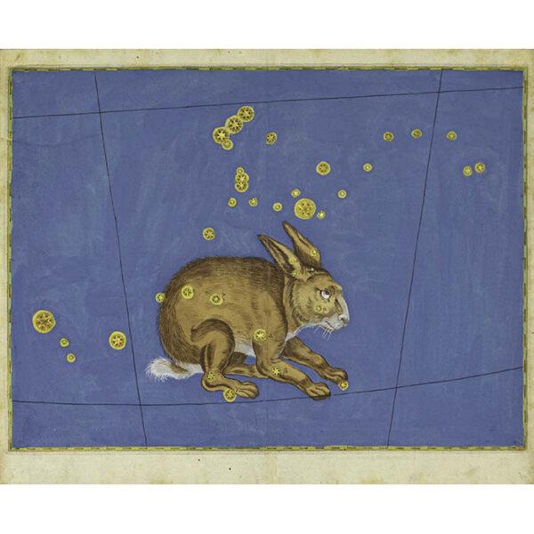 Johann Bayer, Lepus Constellation from Uranometria