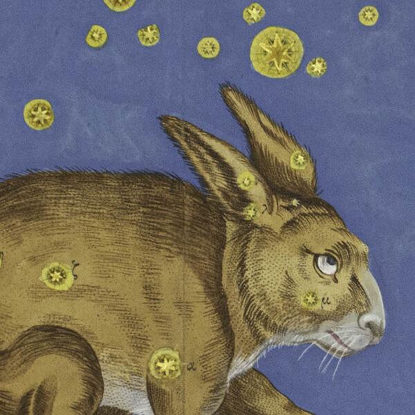 Johann Bayer, Lepus Constellation from Uranometria, detail