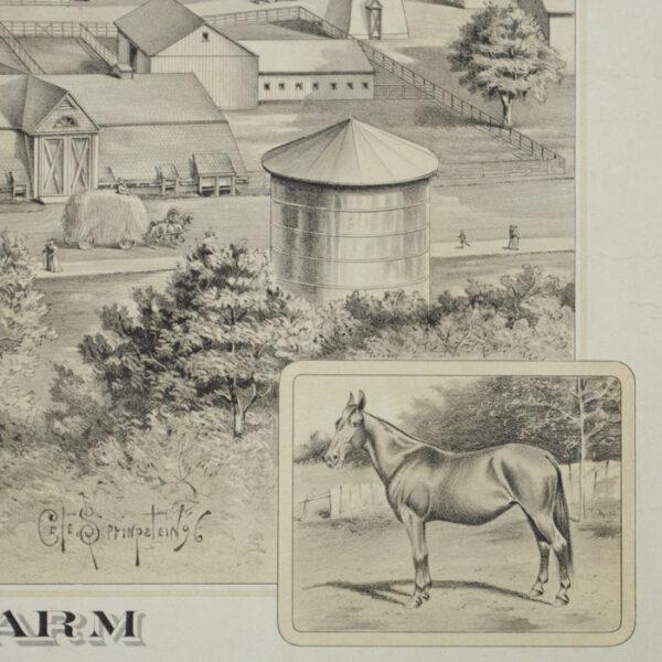 Forest Park Farm, detail