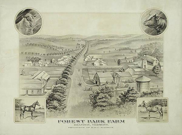 Forest Park Farm, Brandon, Vermont